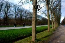 The Gardens of Versailles, France (14)