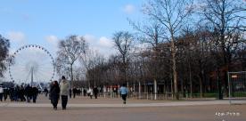 The Tuileries Garden, Paris (13)