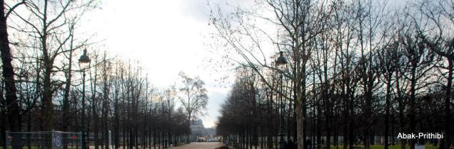 The Tuileries Garden, Paris (14)