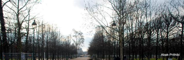 The Tuileries Garden, Paris (14)