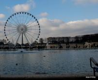 The Tuileries Garden, Paris (15)