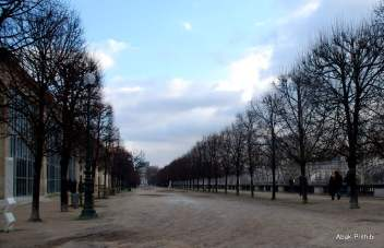 The Tuileries Garden, Paris (19)