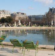 The Tuileries Garden, Paris (7)