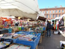 Wednesday market in Toulouse (12)