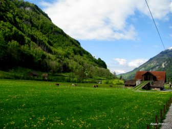Grindelwald, Switzerland (1)