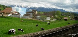 Grindelwald, Switzerland (2)