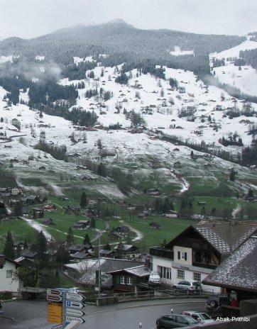 Grindelwald, Switzerland (5)