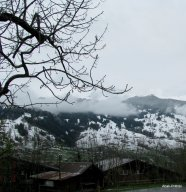 Grindelwald, Switzerland (9)