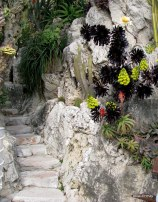 Jardin Exotique de Monaco (19)