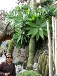 Jardin Exotique de Monaco (27)