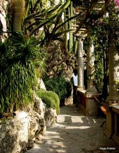 Jardin Exotique de Monaco (30)