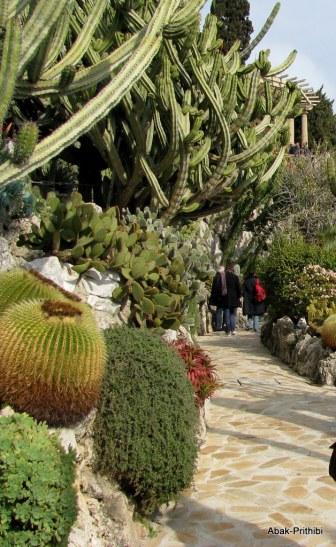 Jardin Exotique de Monaco (31)