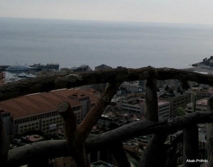 Jardin Exotique de Monaco (35)