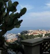 Jardin Exotique de Monaco (38)