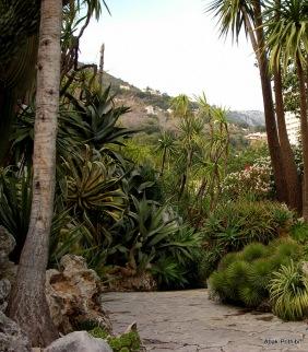 Jardin Exotique de Monaco (7)