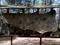 Meze dinosaur park, South France (1)