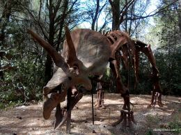 Meze dinosaur park, South France (11)