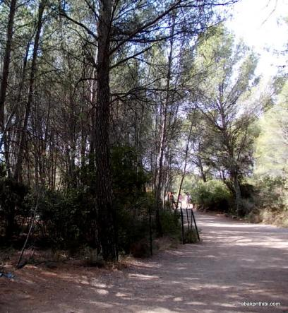 Meze dinosaur park, South France (13)