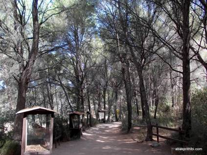 Meze dinosaur park, South France (14)