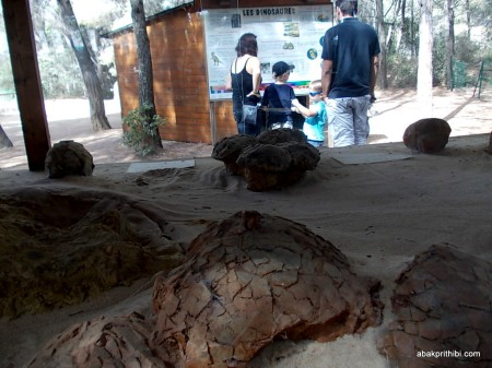 Meze dinosaur park, South France (5)