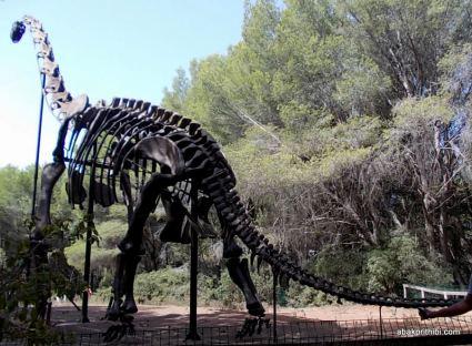 Meze dinosaur park, South France (7)