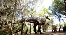 Meze dinosaur park, South France (9)