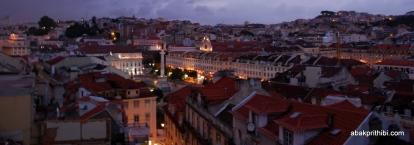 View from Santa Justa Lift, Lisbon, Portugal (9)
