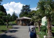 Botanical Garden, Geneva, Switzerland (8)