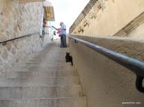 Dubrovnik city wall, Croatia (2)