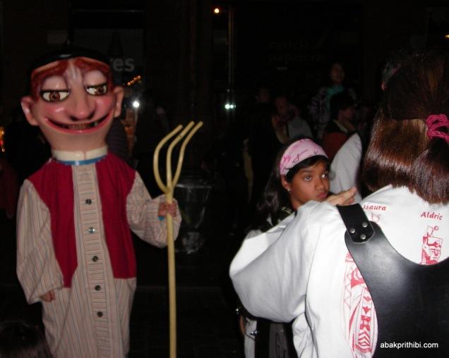Festival Occitania, Toulouse, France (13)