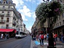 Geneva's Old Town, Switzerland (33)