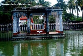Lakshmana Tirtham, Rameshwaram (3)