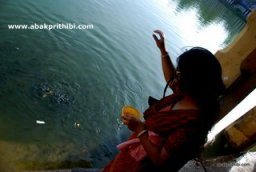 Lakshmana Tirtham, Rameshwaram (4)