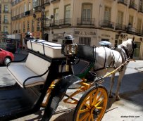 Malaga, Spain (1)