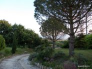 One Summer Evening, Southern France (33)