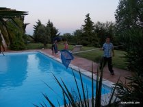 One Summer Evening, Southern France (37)