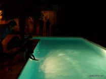 One Summer Evening, Southern France (43)