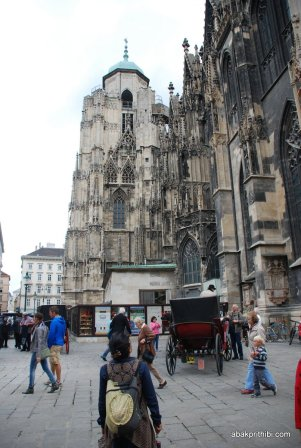 St. Stephen's Cathedral, Vienna (11)