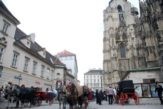 St. Stephen's Cathedral, Vienna (2)