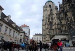 St. Stephen's Cathedral, Vienna (3)