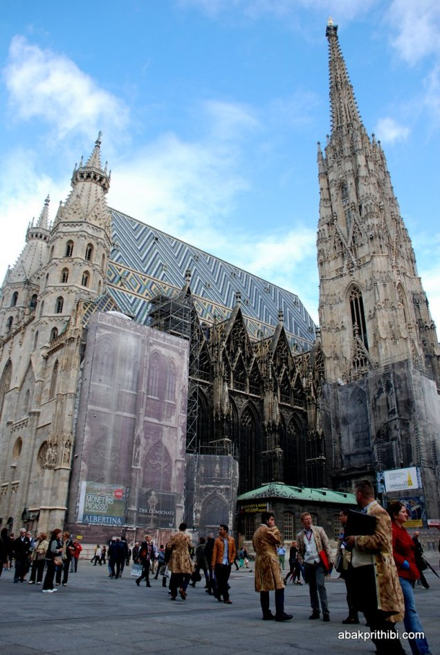 St. Stephen's Cathedral, Vienna (8)