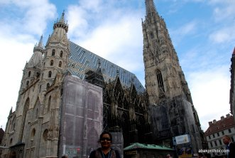 St. Stephen's Cathedral, Vienna (9)