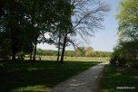 Englischer Garten, Munich, Bavaria (1)