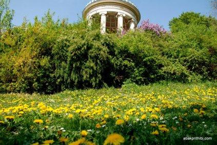 Englischer Garten, Munich, Bavaria (2)