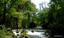 Englischer Garten, Munich, Bavaria (6)