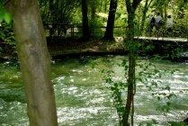Englischer Garten, Munich, Bavaria (7)