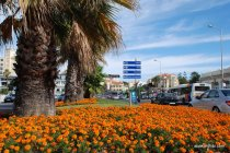 Estoril, Portugal (7)