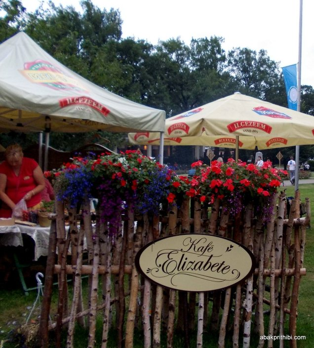 Traditional Applied Arts Fair, Vērmanes Garden Park, Riga, Latvia (17)