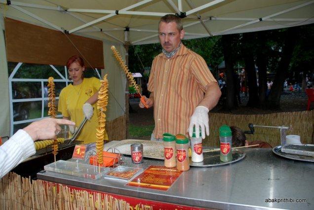Traditional Applied Arts Fair, Vērmanes Garden Park, Riga, Latvia (8)
