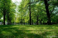 Hofgarten, Munich, Germany (11)